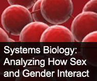 systems biology picture
