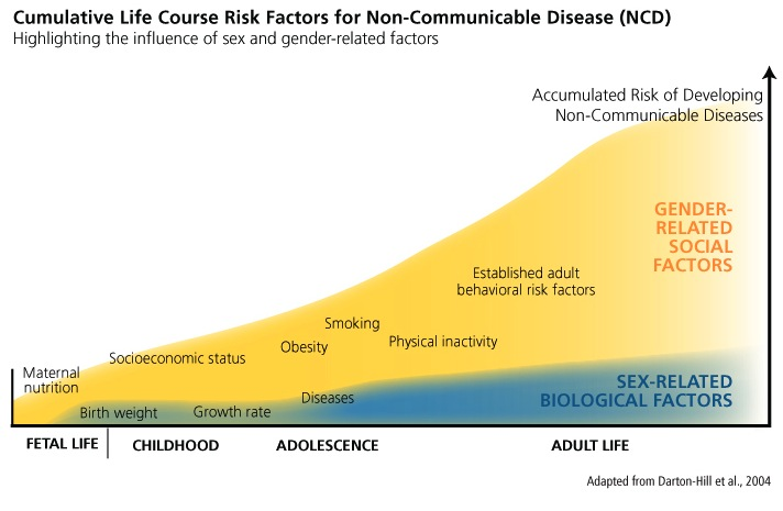 Cumulative Life Course risk factors for Non-communicable Disease (NCD)